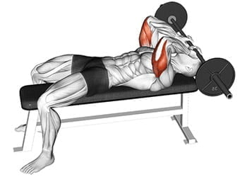 barre front triceps