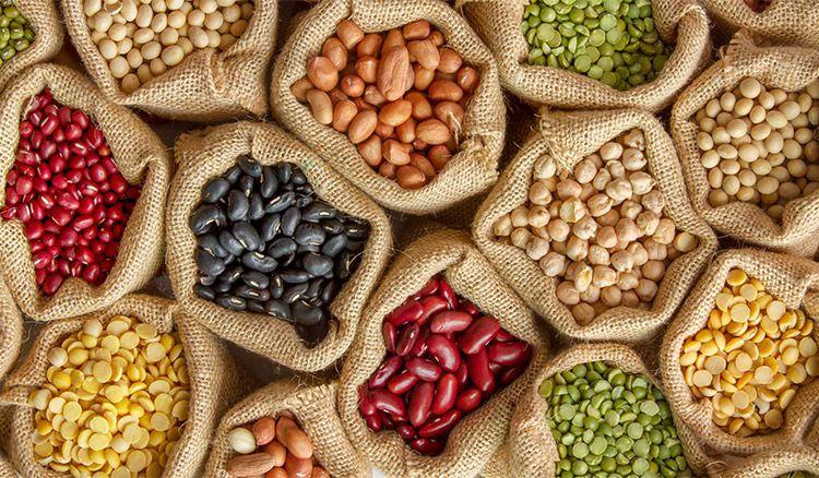 proteines vegetales