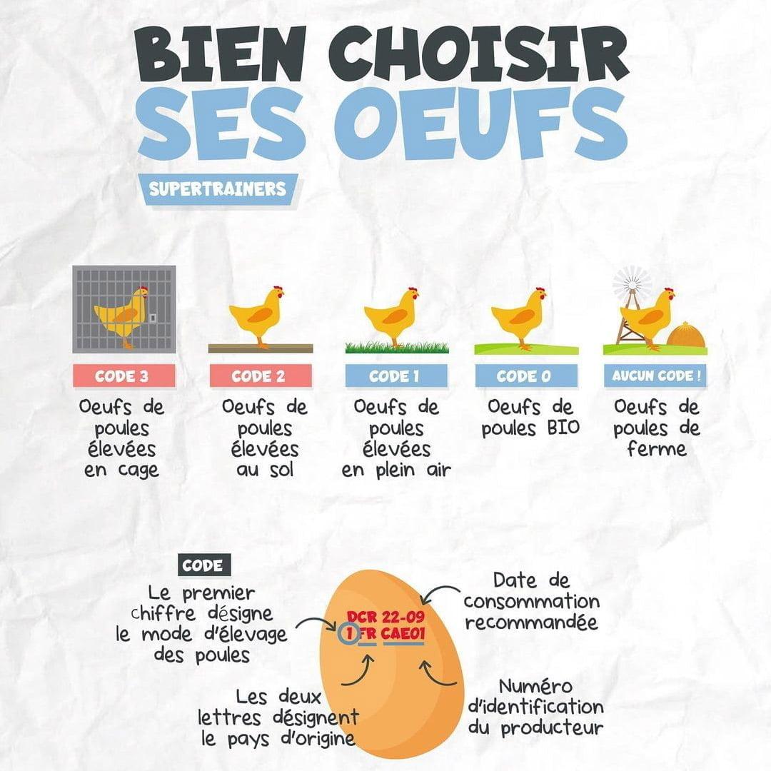 comment bien choisir œuf