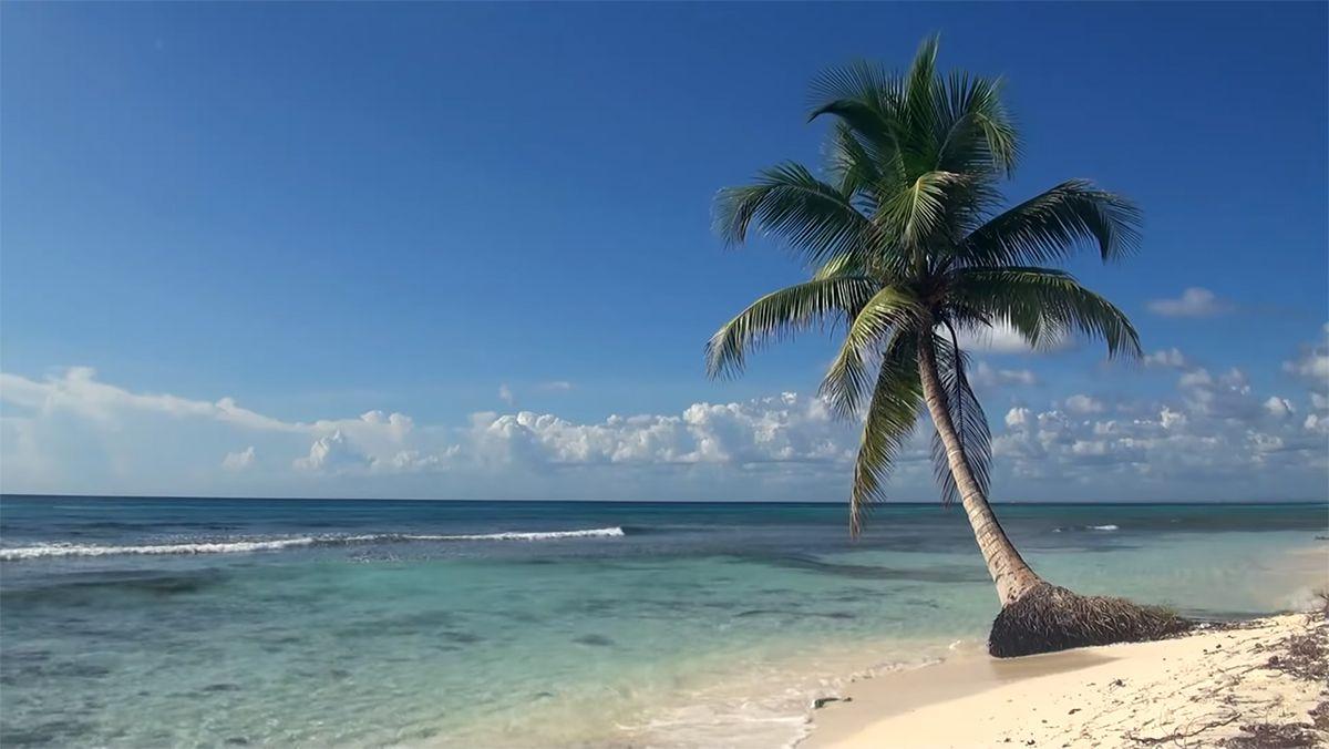 plage sous le soleil