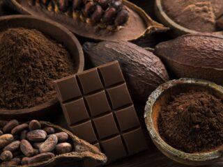 fèves cacao et chocolats