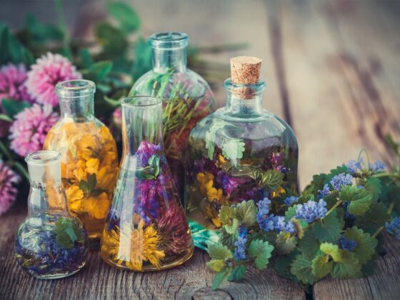 aromathérapie conseil sport plantes