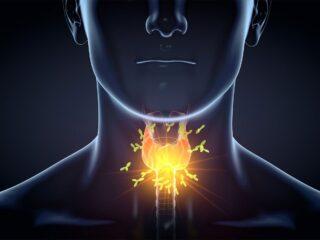bilan thyroïde