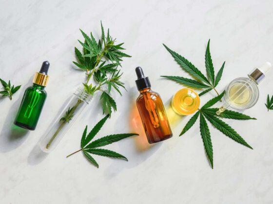 cannabis cannabinoïdes feuille huile CBD THC