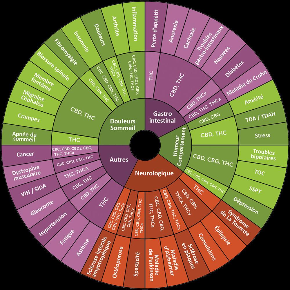 effets thérapeutiques THC CBD cannabis