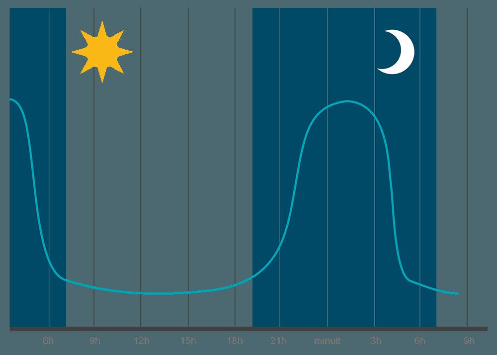graphique mélatonine cycle circadien
