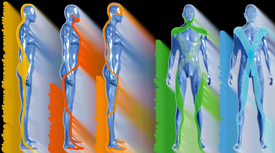 méthode busquet chaîne physiologique