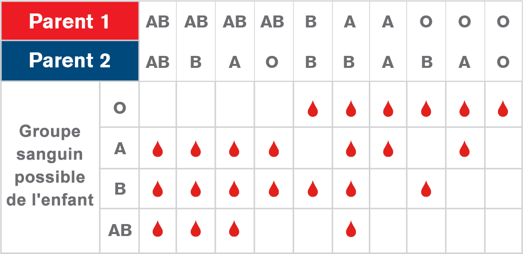 tableau groupes sanguins combinaisons père mère enfant