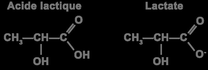 Formule chimique acide lactique lactate