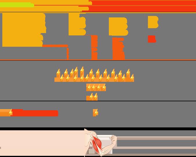 schéma resynthèse ATP 3 filières énergétiques