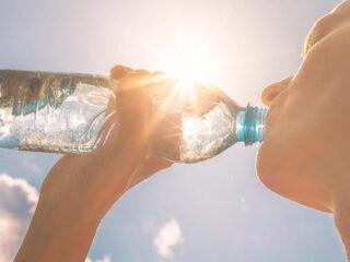 hydratation canicule