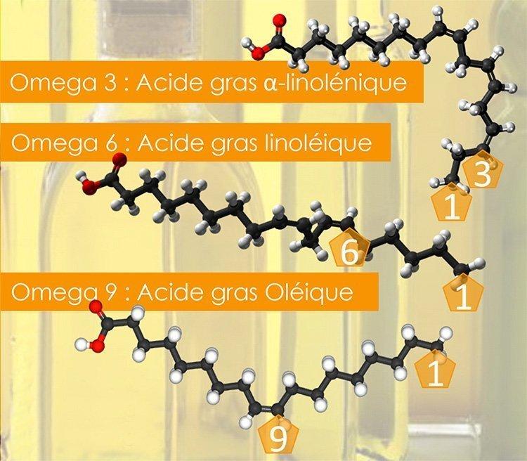 biochimie oméga 3 6 9