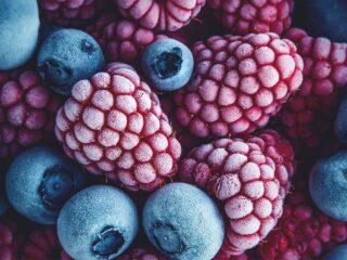 fruits légumes surgelé congelé conserve boite