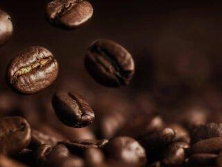 caféine grains café minceur