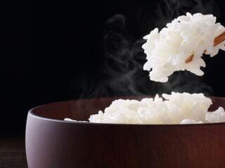 riz aliment gastro-entérite