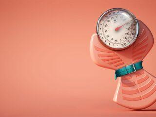 carnitine perdre du poids