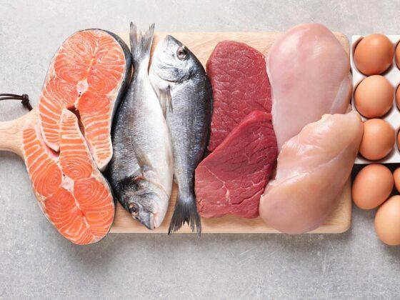aliments sources protéines