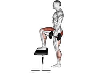 montées sur banc quadriceps
