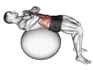 crunch swiss ball abdominaux
