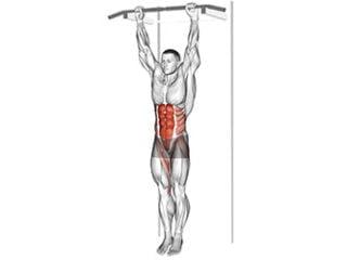 relevé de genoux suspendu abdominaux