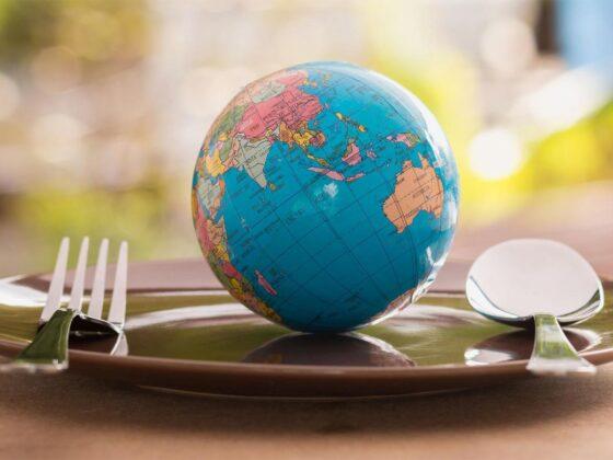 nutrition écologie