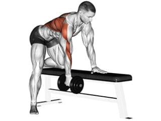 rowing haltère un bras dos