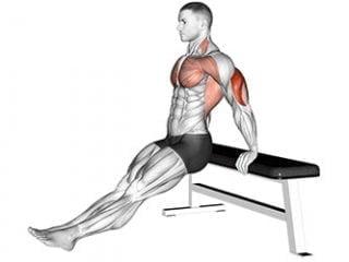 dips sur banc triceps