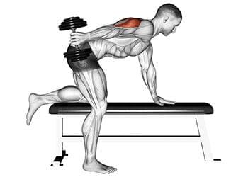kickback triceps