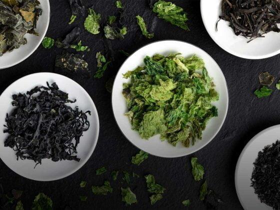 algues bienfaits santé