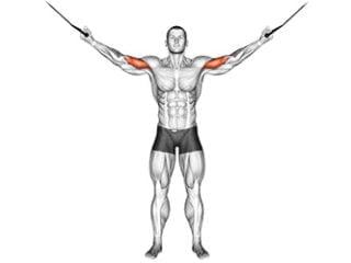curl poulie vis à vis biceps